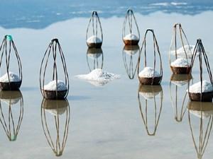 Tính chất của muối Việt Nam?