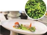 10 gia vị mới xuất hiện trong bản đồ ẩm thực Việt