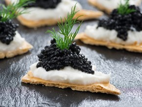 CAVIAR: 10 Fun Facts Every Caviar Lover Should Know
