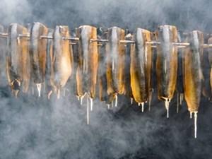 Vòng quanh thế giới qua 14 lễ hội ẩm thực ấn tượng