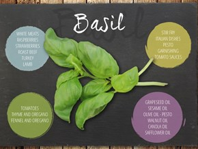 10 Cooking Herbs and How to Use Them