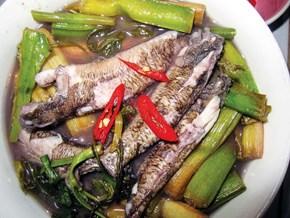 Ăn cá bống sao ở xứ cù lao