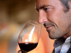 Giải mã thế giới sinh hóa của rượu vang