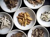 Đầu bếp Thái Lan biến côn trùng thành đồ ăn cao cấp