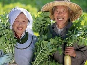 """6 quy tắc """"ẩm thực vàng"""" của người Nhật để sống thọ"""