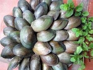 Bowls of Cháo Trai Delight Hà Nội
