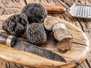 Truffle from A to Z: 26 Things to Know